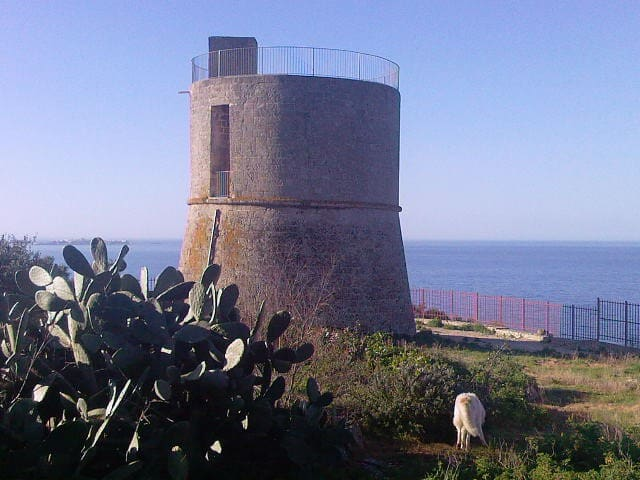 a medioeval tower