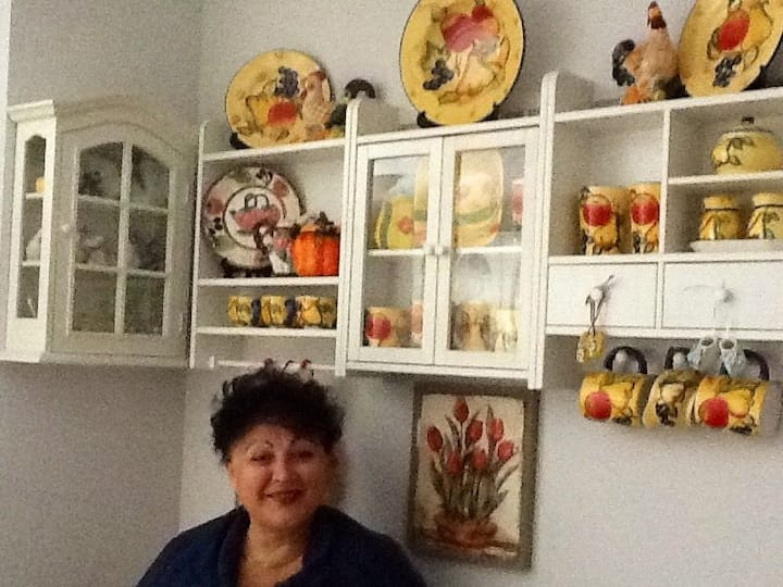 Friendly family house in Otopeni