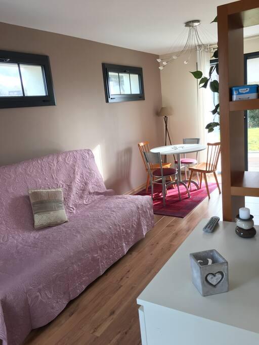 Canapé lit amovible - possibilité de rajouter un lit d'appoint