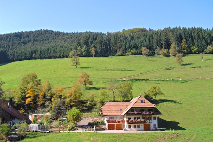 Nice apartment in the Black Forest with private balcony and a magnificent view