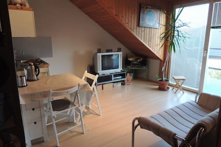 Big sunny studio in Piestany
