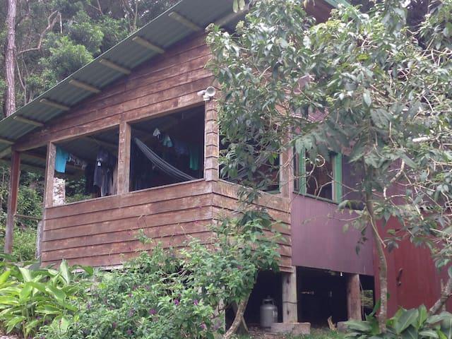 Experience Monteverde Cabin Life - Monteverde - House