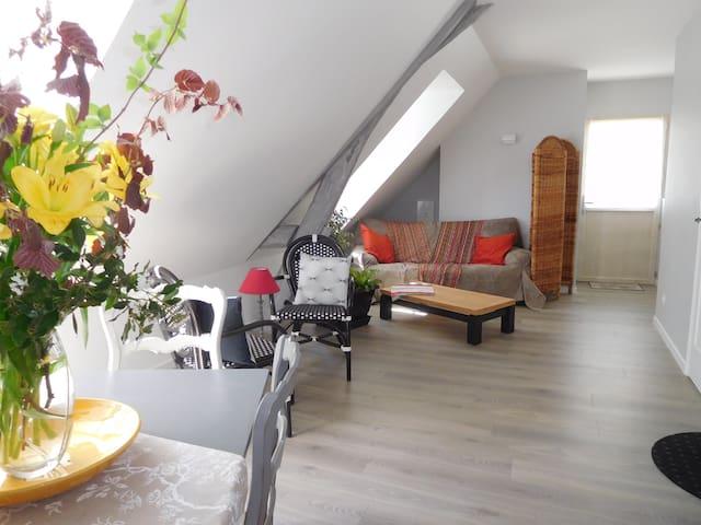 """Suite """"LES AIGRETTES"""" - Véretz - Apartment"""