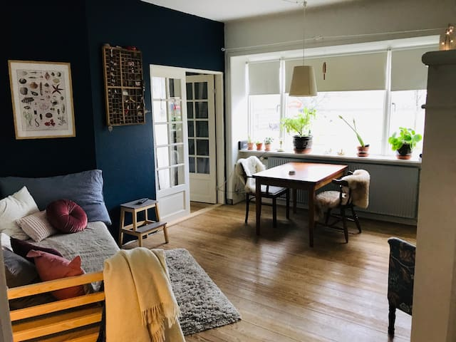 Close to downtown, cozy apartment for couple(+1)