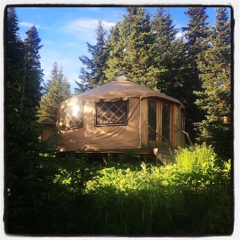 The Farm Yurt