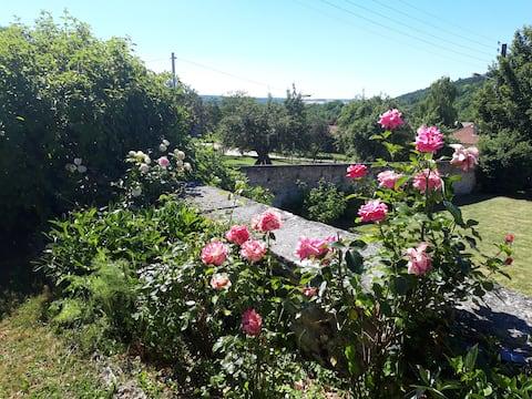 La Roseraie de Saint-Rémy - Appt 3 La Rose Betty B