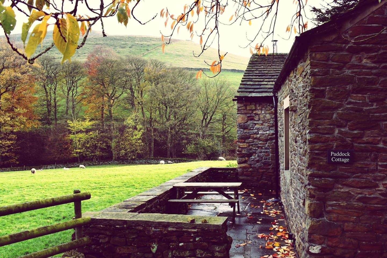 Paddock Cottage Exterior
