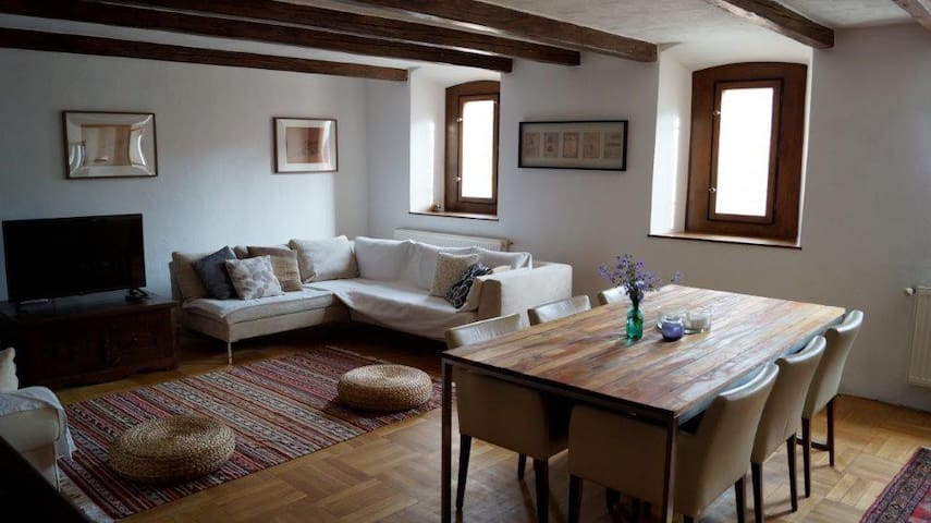 Unique historic flat in the heart of Sopron - Sopron - Huoneisto