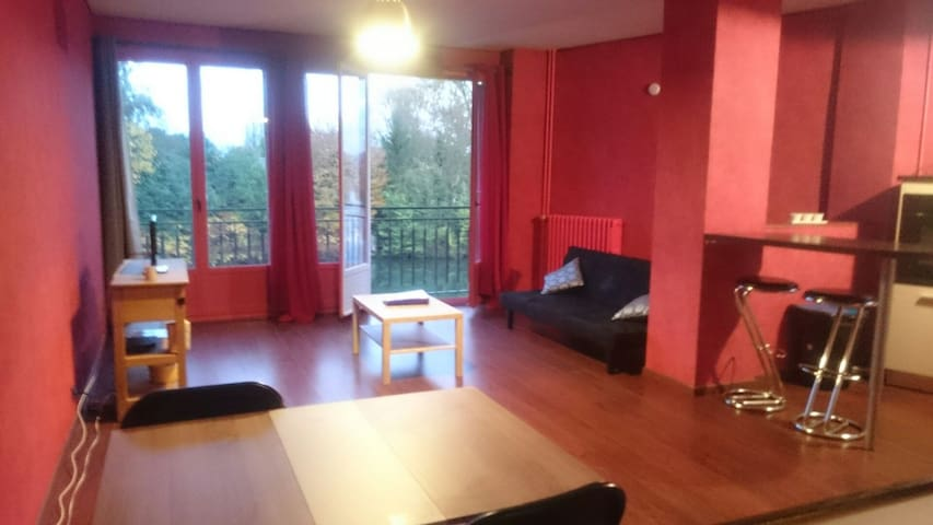 Grand studio à 10 minutes à pied du centre ville - Soissons - Apartment