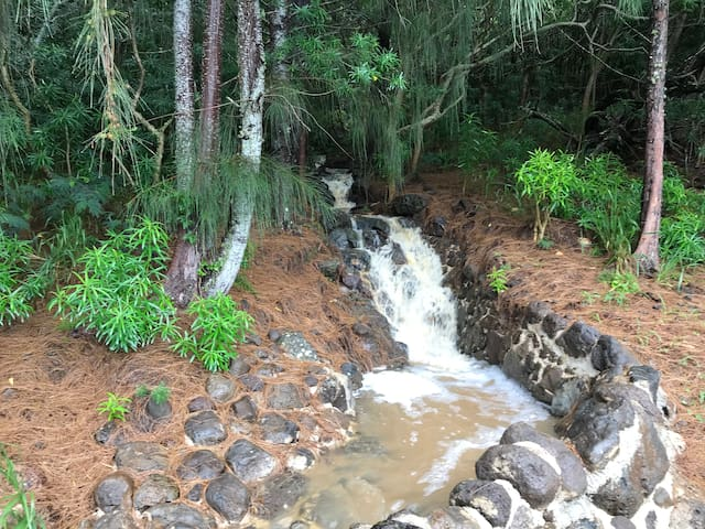 Small water fall behind property when it rains hard...very relaxing t hear the sound