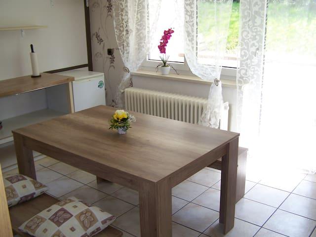 Große,komfortable Ferienwohnung(110m2)in Dielheim - Dielheim - Apartment