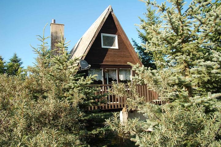 Domek w Stężycy II Ferienhaus in der Kaschubei