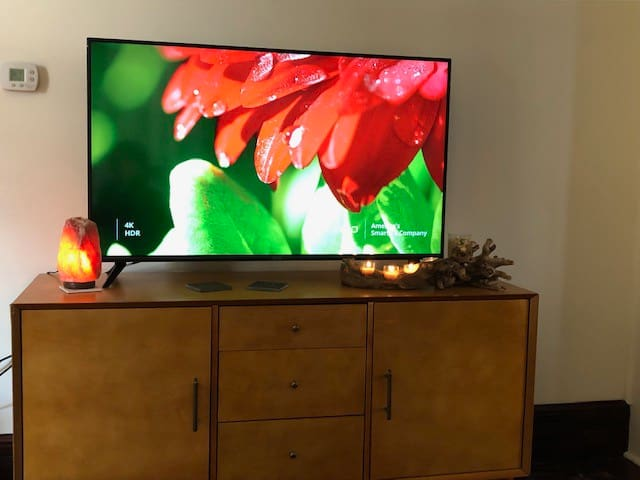 "55"" SMART TV with Cable"