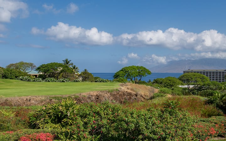 Stunning Ocean Views with Grand Wailea Privileges