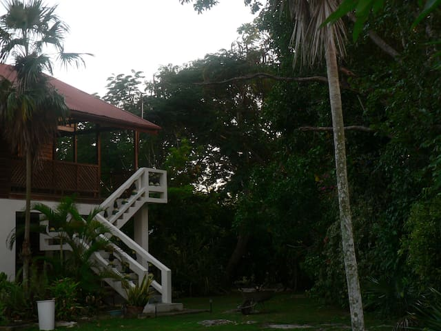 The Big House at Truestay Jamaica - Negril - House