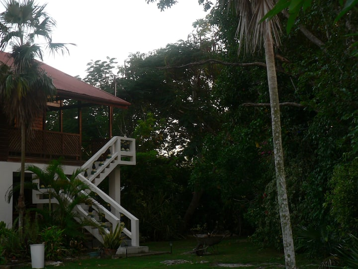 The Big House at Truestay Jamaica