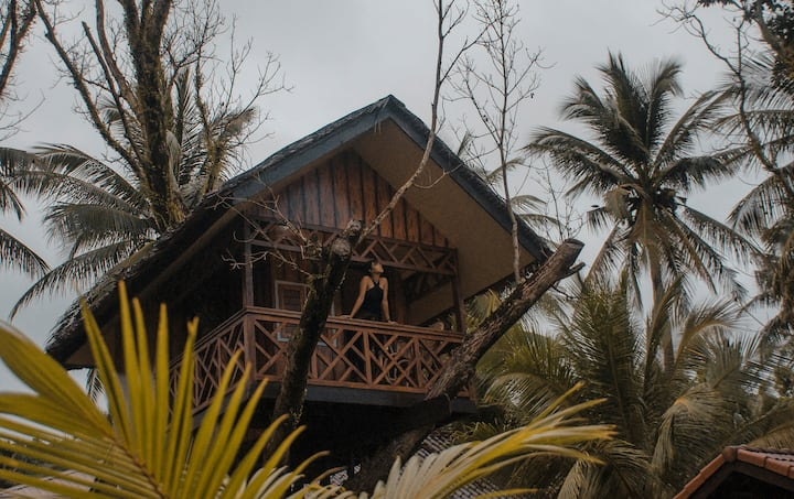 Treehouse by the Beach