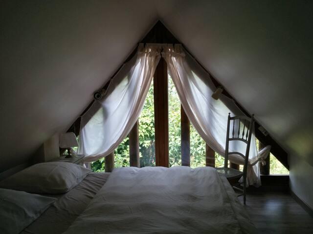 Upper floor - 1 queen size bed, 1 single bed