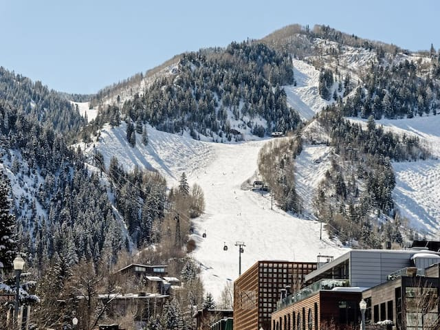 Newly Remodeled Studio Condo in the Heart of Aspen
