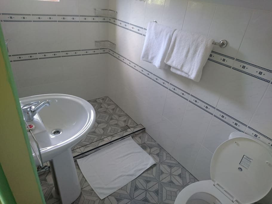 Showroom with toilet and walk in rain shower.