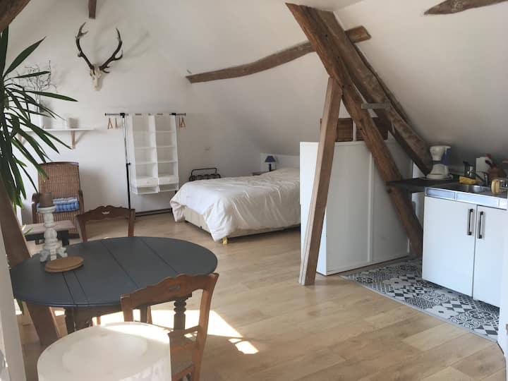 Studio de 35m2 meublé avec cuisine.