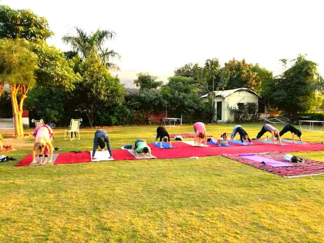 Yoga Retreat in Pushkar