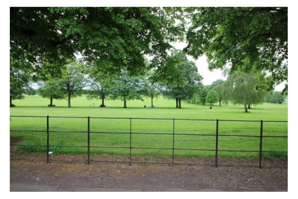 Town Fields Park.... Just step outside the gate!