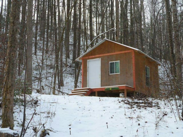Sunflower Cabin w/secluded location - Cosby Tennessee, US - Cabaña