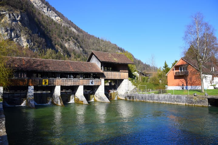 The River Holiday Apartment - Unterseen - Casa