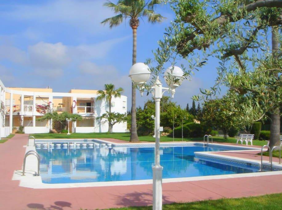 Estudio con piscina departamentos en alquiler en vinaroz for Camping con piscina climatizada en comunidad valenciana