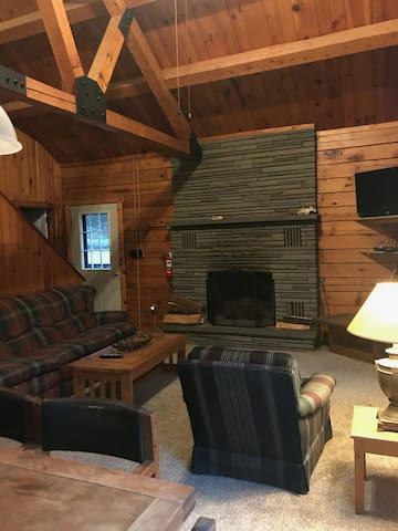 Cozy cabin near Elk Mountain