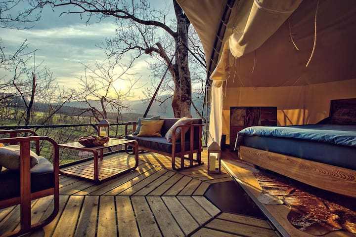 Treehouse Tree Glamping La Coué
