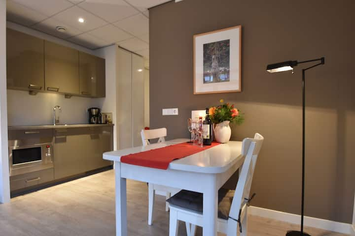 Luxurious apartment walking distance from the pleasant centre of Bergen