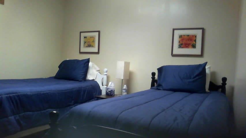 Lower level private room and bath south of TC - Traverse City - Talo