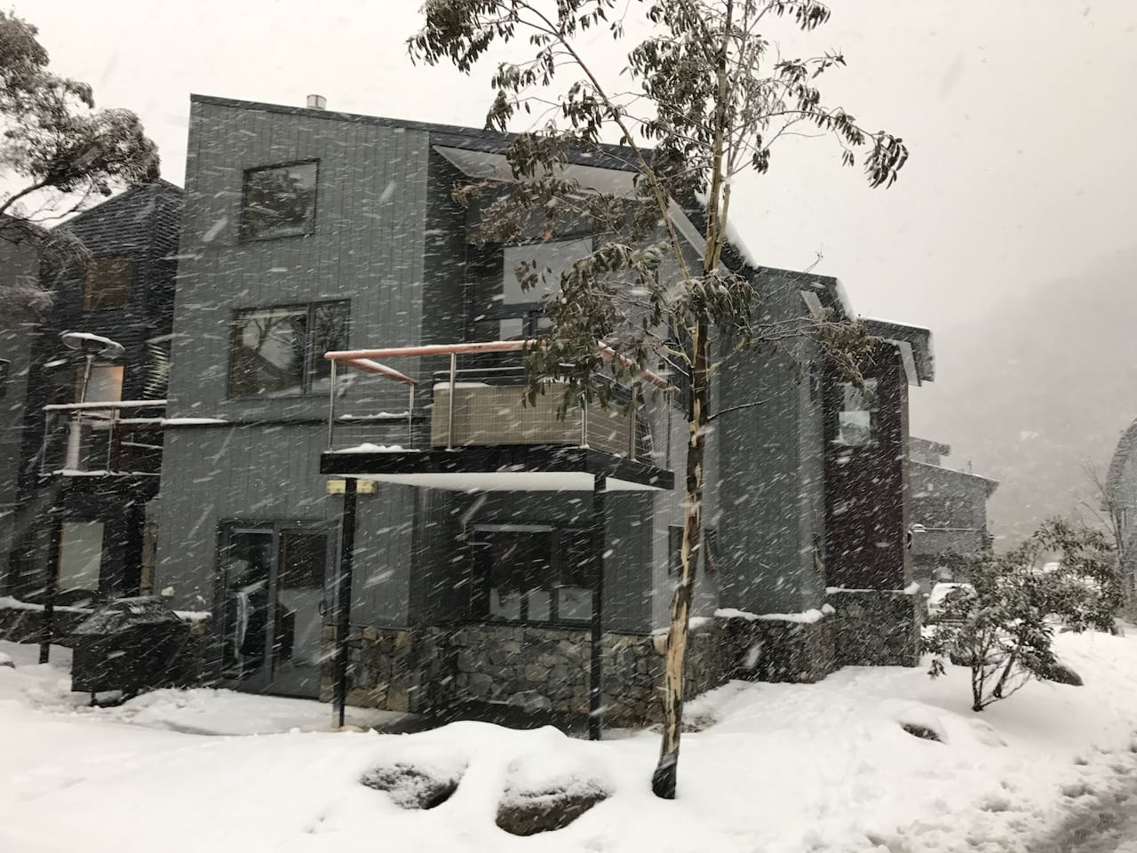 Onyx 3 in full snow