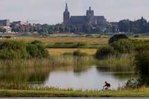 vanuit HET Bossche Broek zicht op de Sint Jansbasiliek