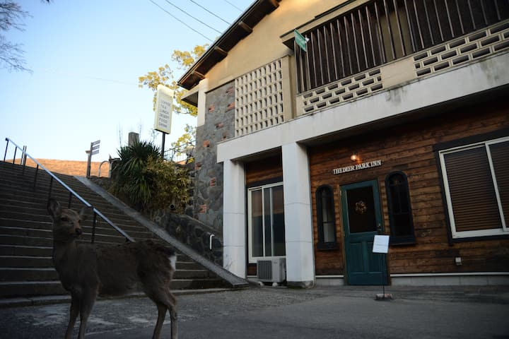 Guesthouse in Nara deer park. Mixed dorm