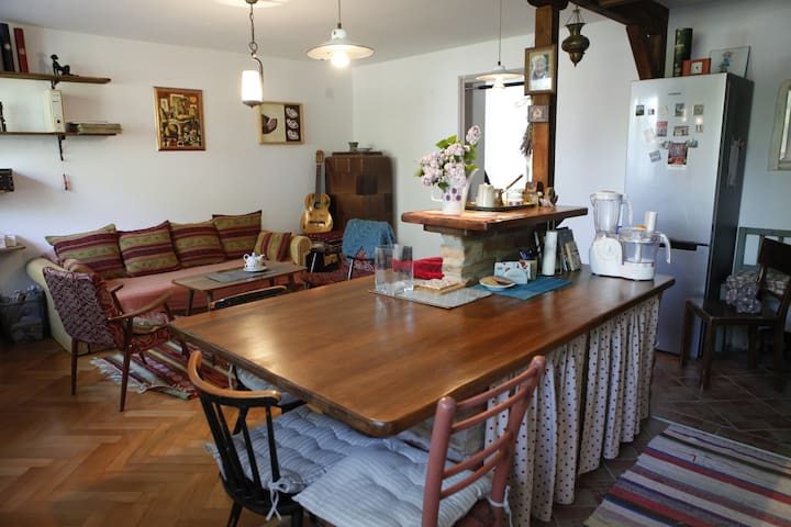 Vintage & cosy flat in the center of Varazdin - Varaždin - Flat