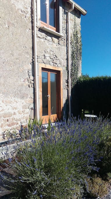 Gite entrance with beautiful lavender