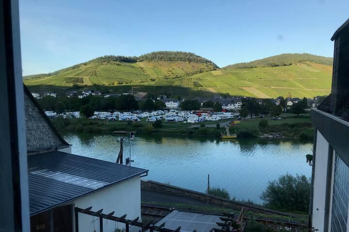 Ferienwohnung mit Blick auf Mosel & Weinberge