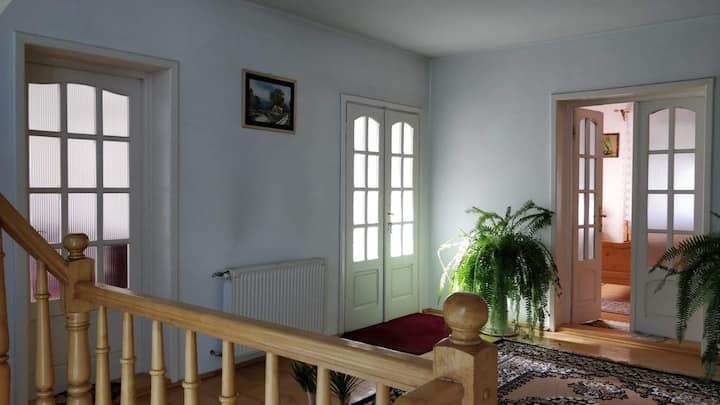 O oaza de liniste in Alba Iulia - dormitor 4