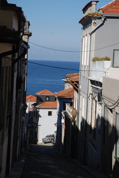 Street & House