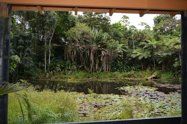 Budget Double Room with Pond Views