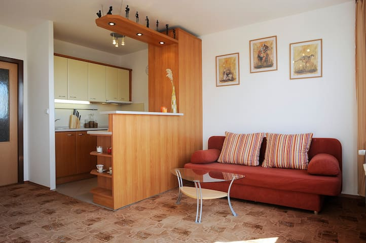 Friedly place for 6, nearby subway, free parking - Praga - Apartament