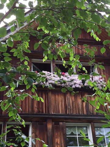 Wunderschönes  Appenzellerhaus mit Boxspringbett