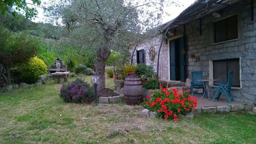 Bed & Breakfast San Michele - Berchidda - Hus