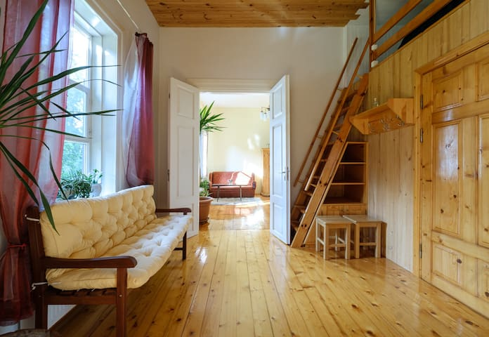 Spacious and sunny rustic apartment