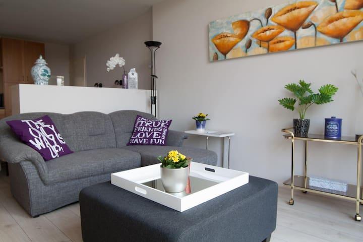 Appartement 1 Vledder zelfvoorzienend(coronaproof)