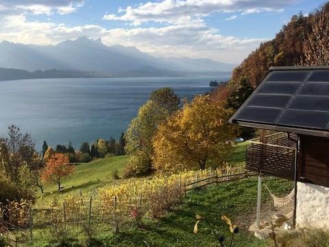 Huvila Bärenegg: pieni helmi Thun-järvellä