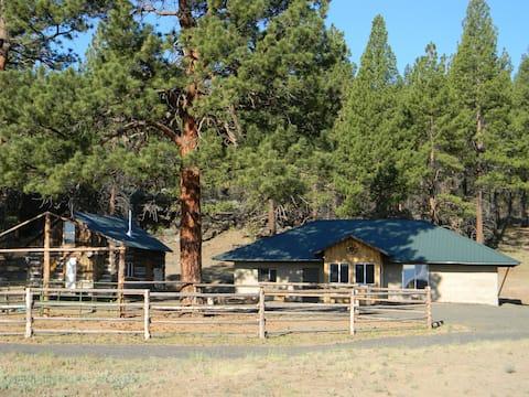 Rock Ridge Ranch- Cabin